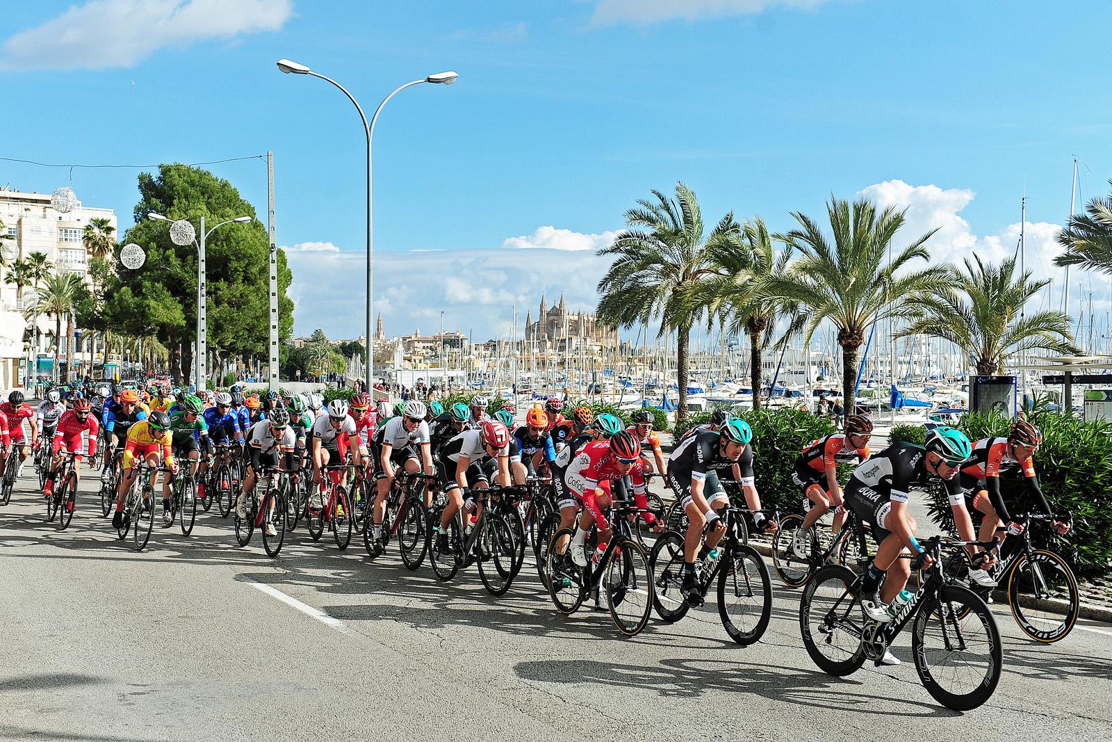 Und schließlich bei der Trofeo Palma, dem letzten von vier zeitgleich stattfindenden Einzelrennen.