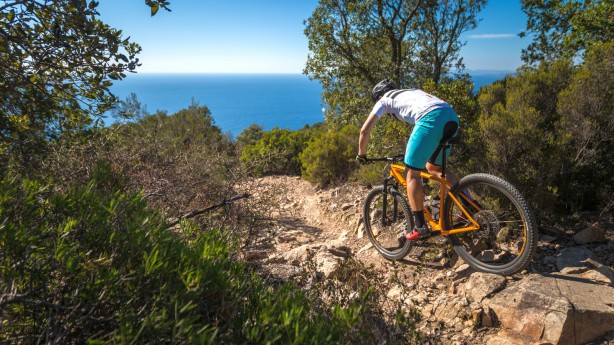 Specialized Epic Hardtail 2017