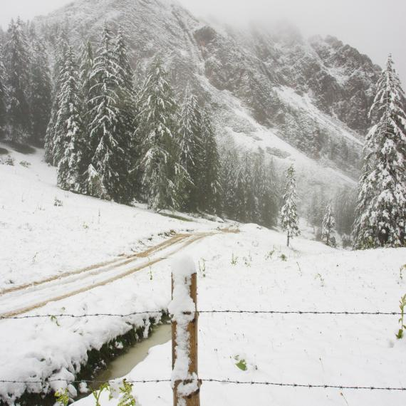 2009 zwang ein heftiger Wintereinbruch mit 20 cm Neuschnee am höchsten Punkt, der Roßalm,die Organisatoren zum Rennabbruch für A und B.
