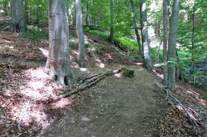und Uphill Line