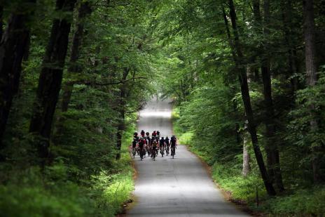 durch mystische Wälder, wo auch der …