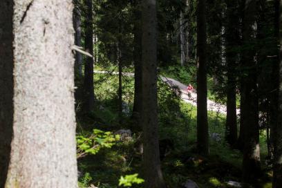 Foto: Anstieg Roßalm 2014