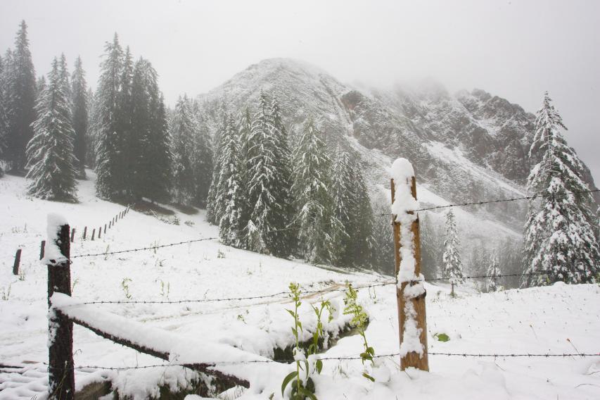 bis hin zu tief winterlichen Bedingungen (Foto: Roßalm 2009)