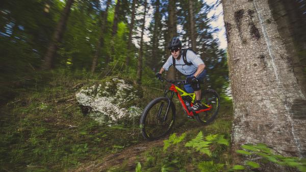 Showroom: Specialized Enduro 29