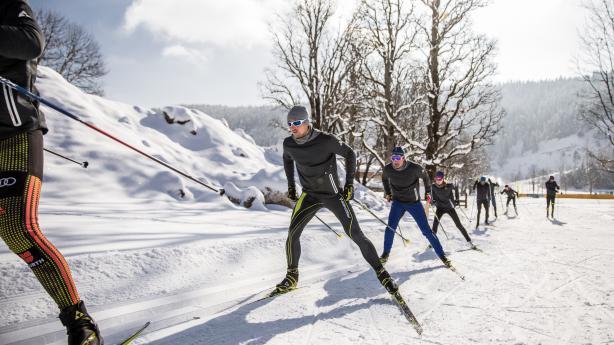 Fischer Skiletics Langlauf