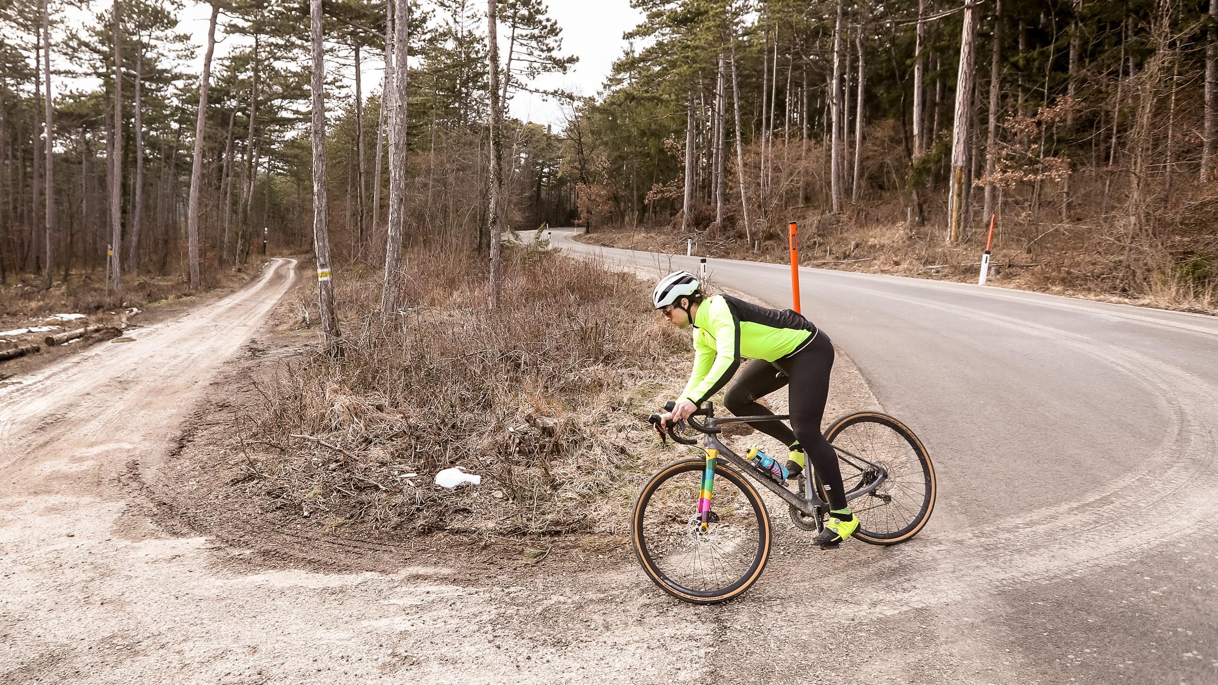 Bergamont Endurance Elite Gravel Granfondo