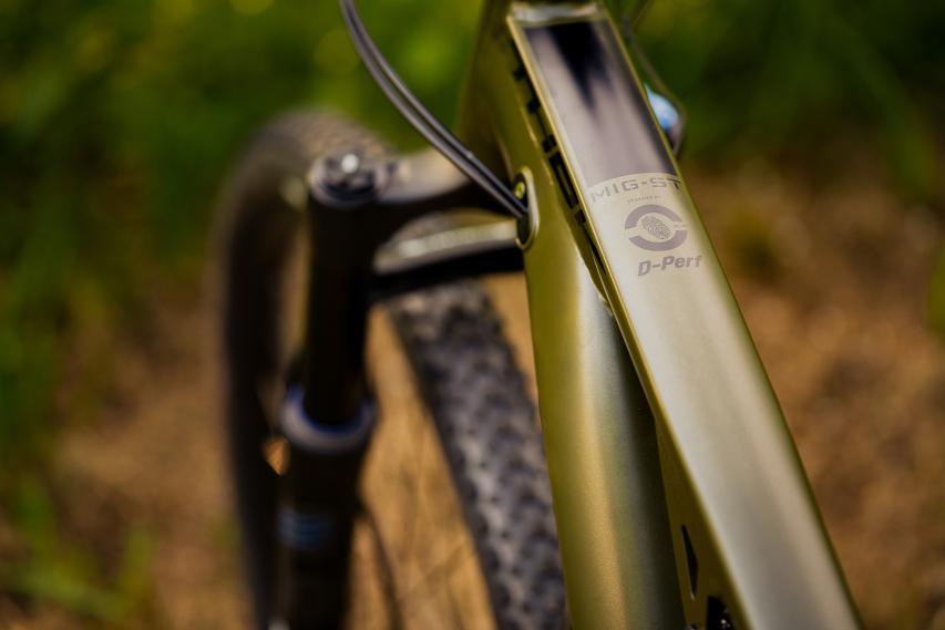 Gabel und Dämpfer am 120 mm Bike