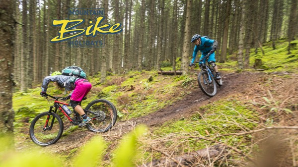 Video: Signature Trails II