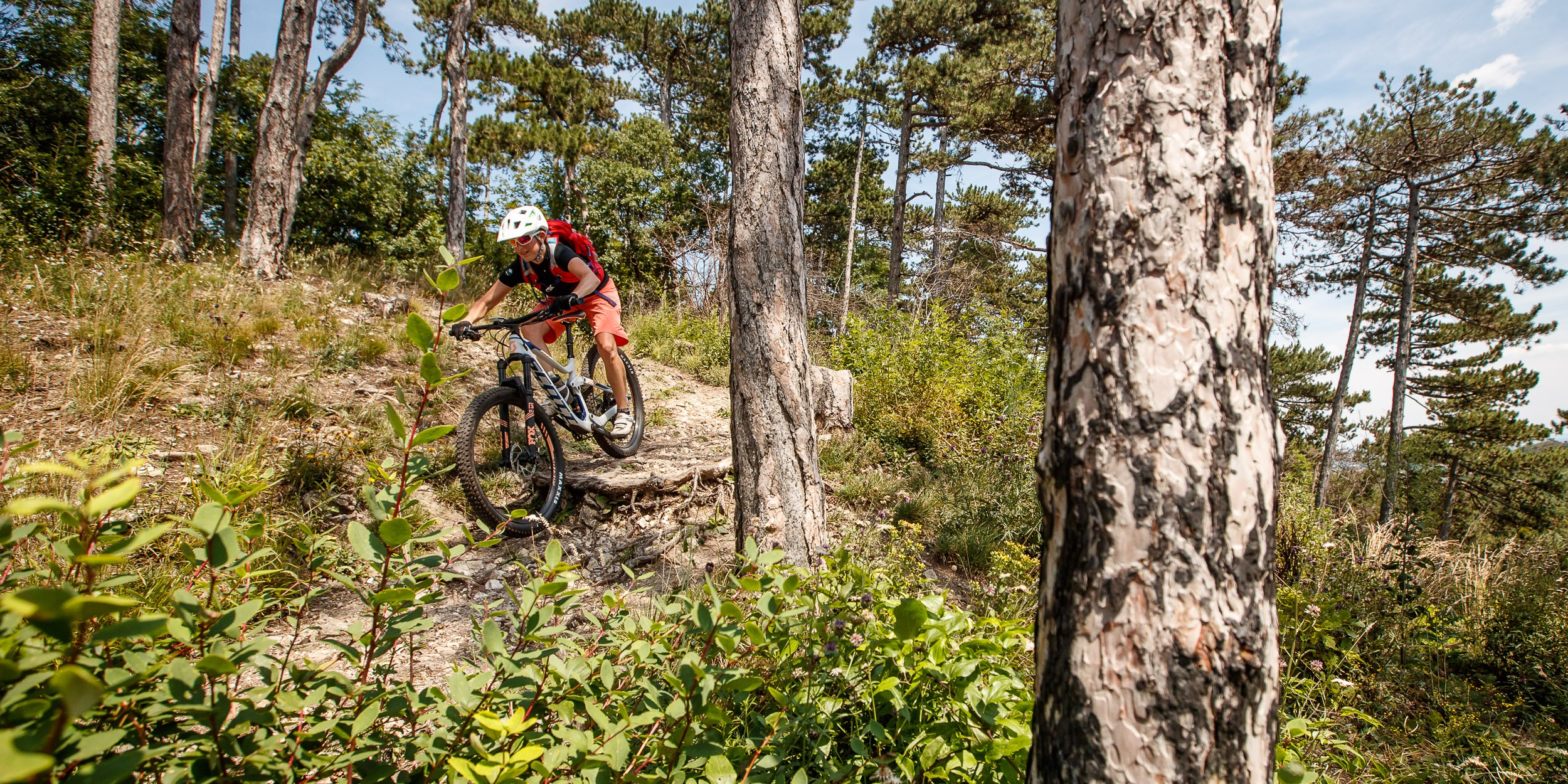Test: Scott Contessa Genius 710