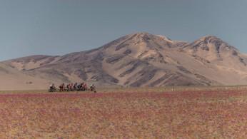 Epica Atacama