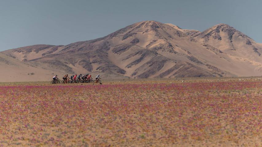 Epica AtacamaSand und Weite, wohin das Auge schaut. Vom Kampf um Meter und Sekunden an einem der trockensten Orte der Welt. Stefan Hackl berichtet vom Wettfahren durch die Wüste Atacama in Chile.