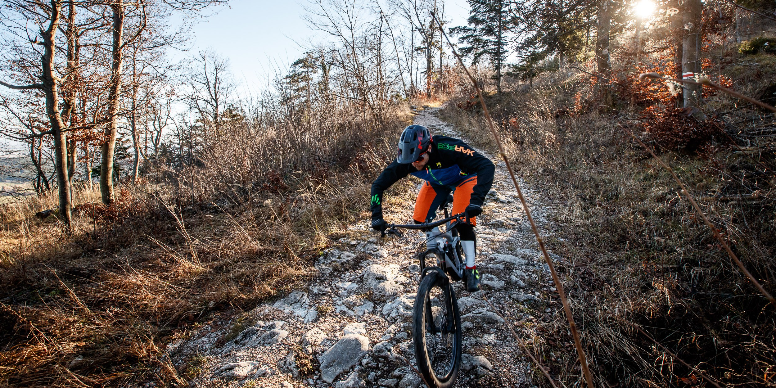 Test: Trek Remedy 2019