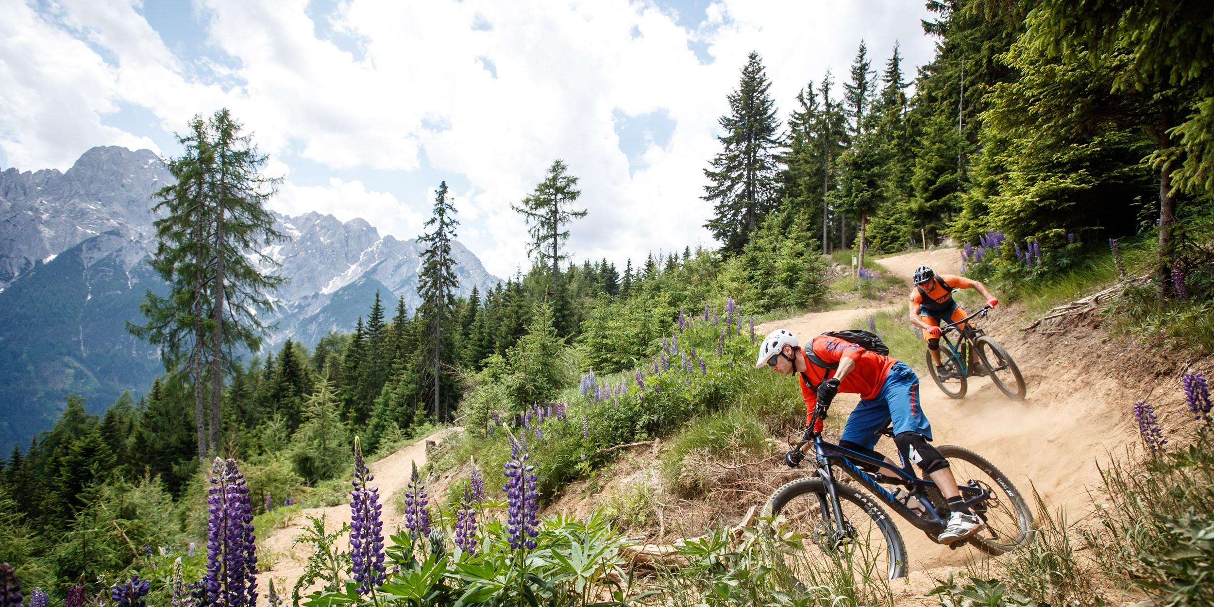 Peter Sagan Trail, Timmeltal und Klammljoch - Biken in Osttirol