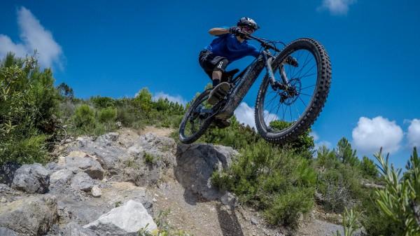 Bergamont E-Trailster Expert 29