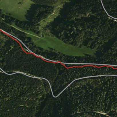 Nur im dichten Wald respektive in einem sehr engen Tal entlang recht steiler Hänge geriet das GPS an seine Grenzen. Das passiert aber auch mit anderen Geräten.