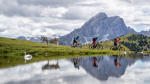 Biken am Kronplatz und rund um das GadertalBikepark-Action am Kronplatz, laute Stille hoch über dem Gadertal - im Herzen der Südtiroler Dolomiten können Biker aus dem Vollen schöpfen.