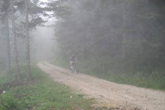 Im dichten Nebel sah ich sie kaum.