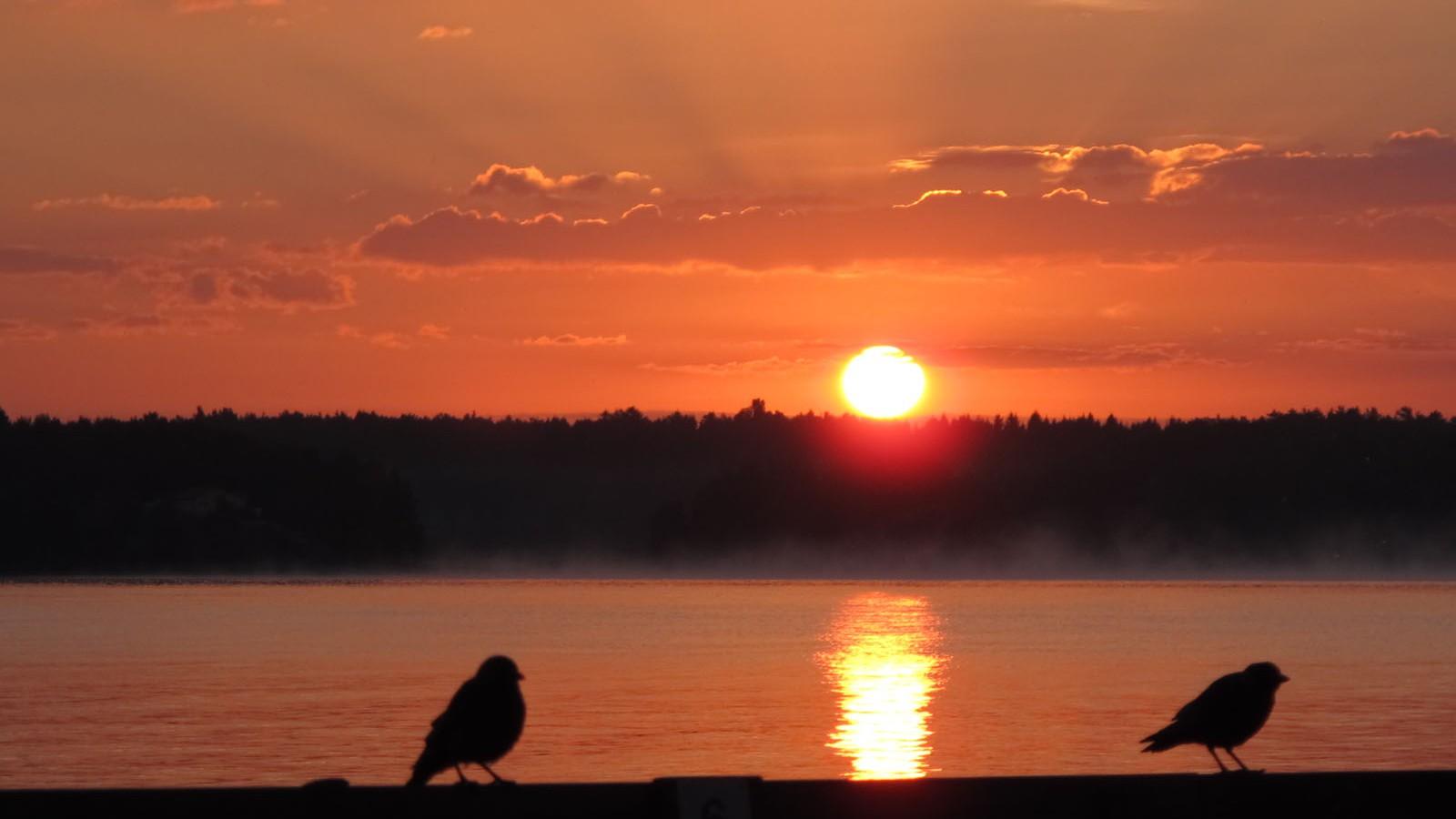 Sonnenaufgang am Vänernsee.