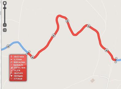 der Polar M400 Track scheint dabei trotz 1s Intervall ein wenig glatter, die Höhenschwankungen sind minimal
