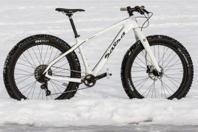 Salsa Beargrease Carbon 1