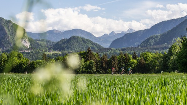 Rennradregion Klopeiner See