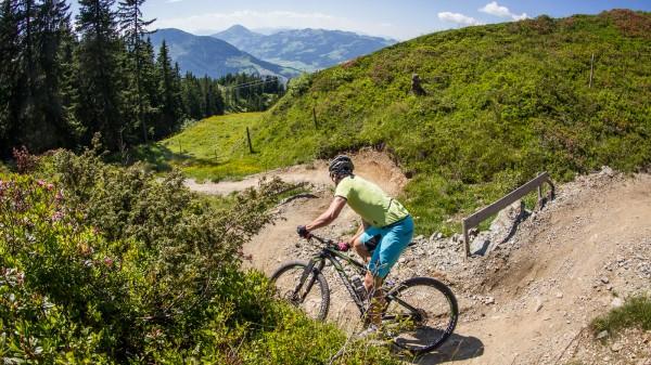 Bike-Neuheiten von Canyon, Giant, Merida, Radon, Marin und Liv