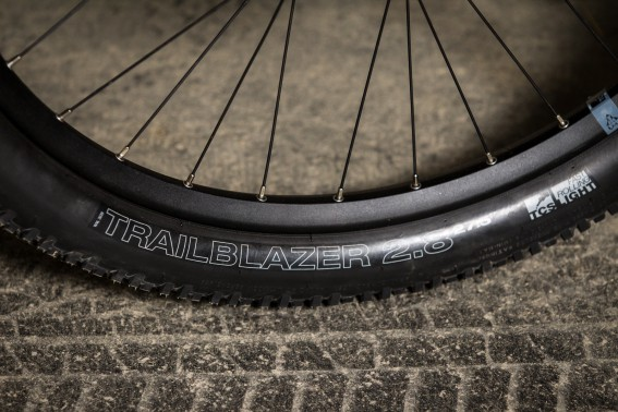 Die WTB Trailblazer Reifen ...