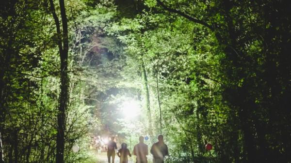 Laufen bei Nacht beim 2. Nightrun Langenzersdorf